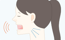 顎関節と咬合の調和